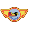 Barnstorming Flying Aces Trophy -32900